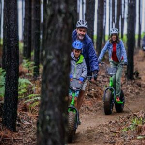 Riding through the plantation - Things to do in Nelspruit - Shandon Lodge