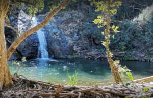 A scenic waterfall at the Queen Rose Hiking Trail - Shandon Lodge