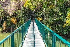 Suspension Bridge - Botanical Gardens Nelspruit - Shandon Lodge