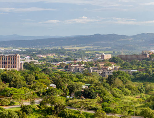 Travel Guide For Nelspruit Accommodation