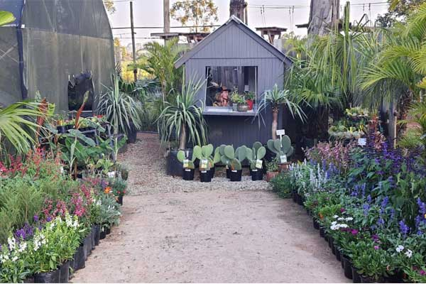 Food Forest Nursery - Places to visit in Nelspruit - Shandon Lodge