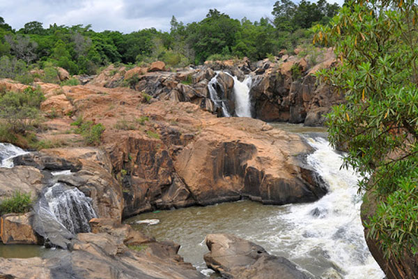 Botanical Gadens Nelsprut - Places to Visit in Nelspruit - Shandon Lodge